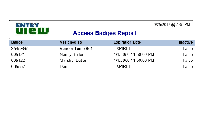 Access badge visitor - contractor report